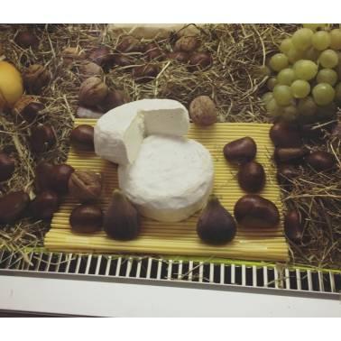 Bucaneve (Camembert) di bufala - Formaggi